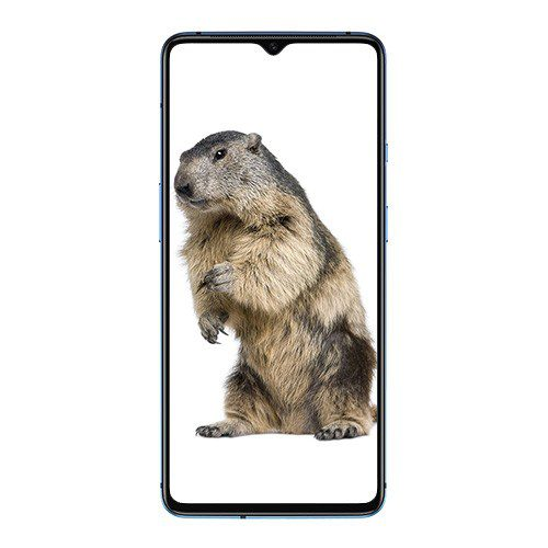 Oneplus 7T front display - Best prices in Kenya at Mobilehub
