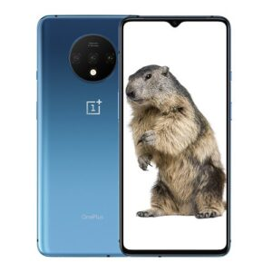 Oneplus 7T front and back display - Best prices in Kenya at Mobilehub