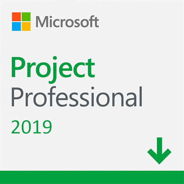 Microsoft Project Professional 2019 (1-User License, Windows Download)
