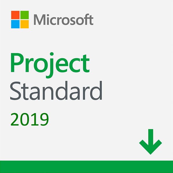 Microsoft Project Standard 2019 (1-User License, Windows Download)