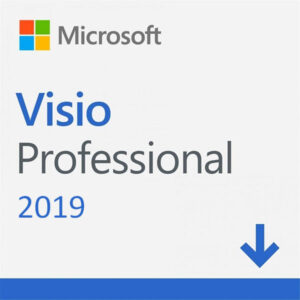 Microsoft Visio Professional 2019 (1-User License, Download)